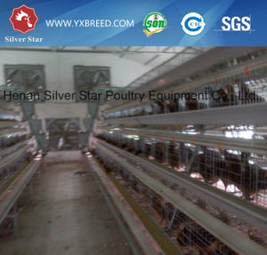 Automatic Poultry Farm Battery Cages A3l90 for Laying Hens pictures & photos