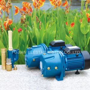 Domestic Pool Self-Priming Jet Deep Well Pump with Tube pictures & photos