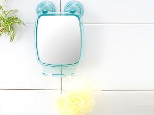 Bathroom Mirror with Hook