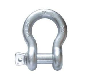 Alloy Screw Pin Shackles pictures & photos