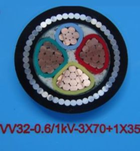 Low Voltage 1kv PVC Insulation Steel Wire Armored Cable pictures & photos