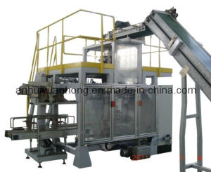 Secondary/Bag Into Bag Packaging Machine pictures & photos