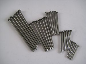 Polishing Stigrna Steel Wire Nails pictures & photos