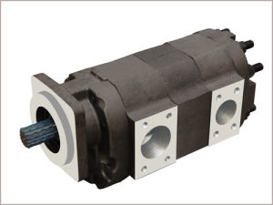 Parker/Commercial/Permco Gear Pump & Motor pictures & photos