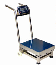 Electronic Movable Platform Scale