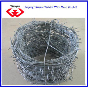 Hot Dipped Galvanized Barbed Wire (TYB-0061) pictures & photos