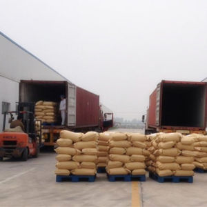 Manufacture of Chinese Garlic Powder pictures & photos