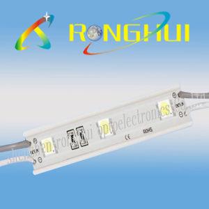 5050SMD LED Modules (RH-B1275X3SMD-5050)
