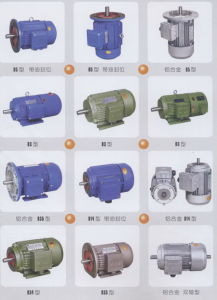 Y Series Induction Motor / Electric Motor