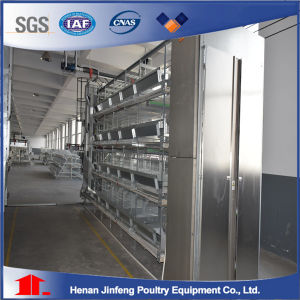 3-8 Tiers H Type Chicken Laying Hen Cages/ Poultry Equipment in Africa pictures & photos