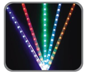 LED Rope Light (BY-LRS-2W-120V)