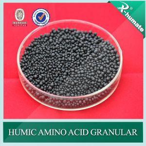 Humic Acid + Amino Acid Granular Organic Fertilizer pictures & photos