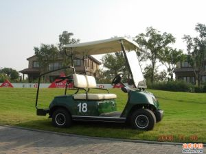 2 Seaters Electric Buggy pictures & photos