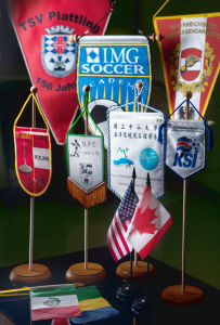 Printed Pennants pictures & photos