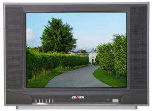 "21"" Normal Flat / Pure Flat CRT Color TV (21T7)"