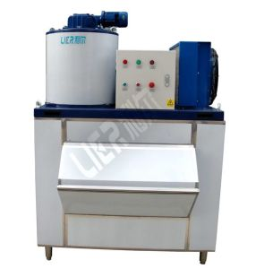 CE / SGS Certificated Flake Ice Machine with Steady Performance pictures & photos