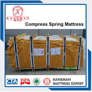 Cheap Price Hebei Factory Price Bonnell Spring Mattress pictures & photos