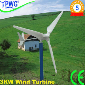 Wellsee Ws-Wt3000W Small Maglev Wind Turbine with CE, RoHS Wind Power Generator pictures & photos