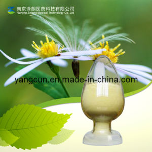Natural Carnosic Acid with Kosher Certificate (CAS: 3650-9-7) pictures & photos