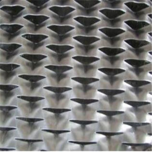 Expanded Metal Mesh of Different Holes pictures & photos
