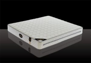 Five Zone Pocket Spring Mattress with Euro Top (Maserati-L)