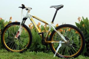 Dema PRO Mountain Complete Bicycle (30s)