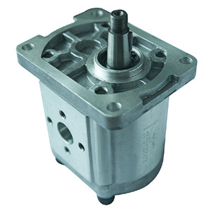 Gear Pump pictures & photos