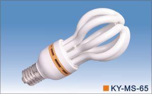 PBT 65W Daylight Energy Saving Light Bulbs pictures & photos