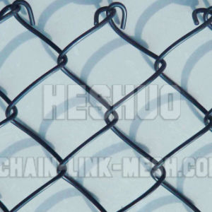 3mm PVC Coated Chain Link Fence pictures & photos