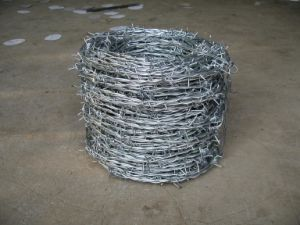 Galvanized Barbed Wire (factory ISO9001) pictures & photos