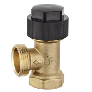 Brass Radiator Valve for Heating System (a. 0503) pictures & photos