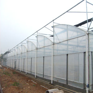 Feilongjiahe Zigzag Greenhouse for Vegetables Garden Greenhouse pictures & photos