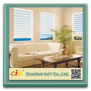 High Quality Zebra Blind Sheer Screen Roller Shades pictures & photos