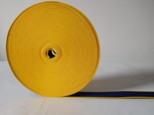 25mm Blue&Yellow Secondary Color Polyester Webbing for Dog Belt pictures & photos