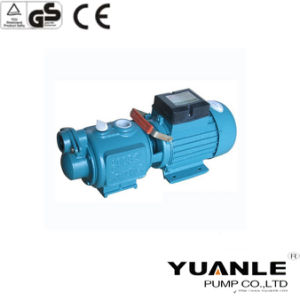 Self Suction Screw Pump (25ZGD1.7-100-0.75)