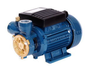 Peripheral Water Pump with CE Approved (dB125) pictures & photos