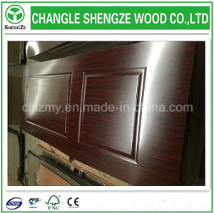 Cheaper Price Mold Panel Door Skins pictures & photos
