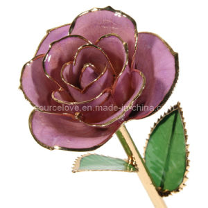 Christmas Gift - 24k Gold Trimmed Rose (MG006)