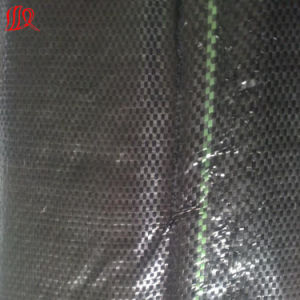 300g PP Woven Geotextile pictures & photos