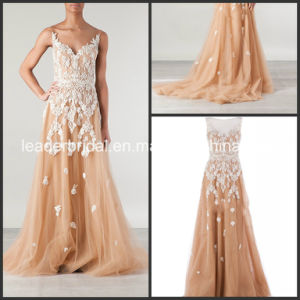 Champagne Tulle Celebrity Dresses Lace Party Prom Evening Gowns Ld11542 pictures & photos