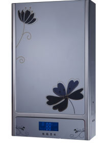 Flue Type Gas Water Heater with Stainless Steel Body and Competitive