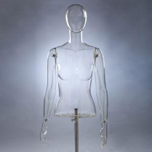 High Quality Transparent Female Half-Body Mannequin (PC-UN-019-1)