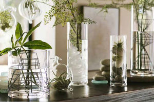 Home Decoration Tall Glass Vases Cylinder Shape Flower Glass Vase pictures & photos