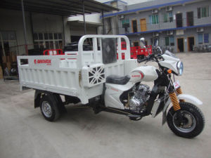 New 200cc Hot Cargo Tricycle pictures & photos