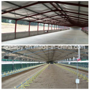 Natural Ventilation Chicken House for Tropical Area pictures & photos