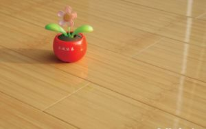 Carbonized Gloss Bamboo Flooring pictures & photos