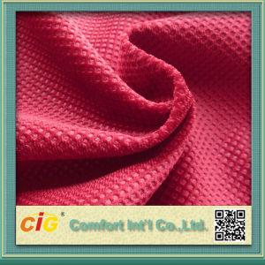 Short Hair Velvet Embossed Velour with Brush Warp-Knitting Shsf04681 pictures & photos