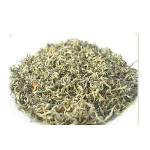 Premium Jasmine-Scented Bi Luo Chun Green Tea pictures & photos