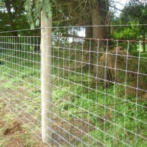 Cattle/Deer/Goat/Cow/Livestock Rail Fence pictures & photos