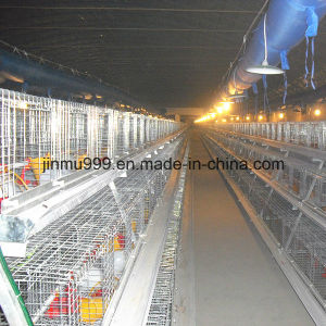 Cheap Automatic Poultry Equipment Broiler Chciken Cage Frame for Farm Use pictures & photos
